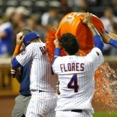 MLB: Tampa Bay Rays at New York Mets